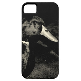 He's Watching You iPhone 5 Covers