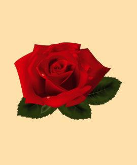 heureux rose d'éclat de lueur d'étincelle de fleur t-shirts