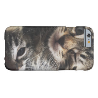 Hey Cutie! Barely There iPhone 6 Case