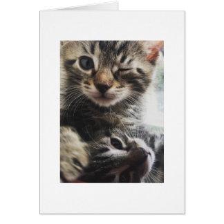 Hey Cutie! Card