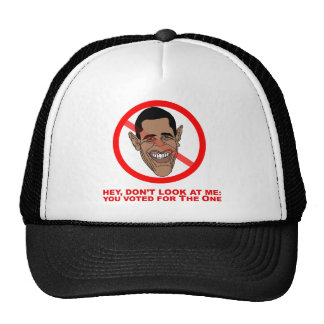 Hey, don't look at me: you voted for The One Trucker Hat