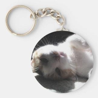 hey kitty kitty key chain! basic round button keychain