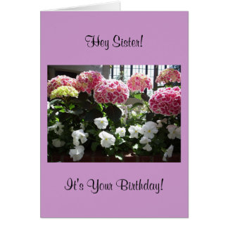 Hey Sister Birthday Card
