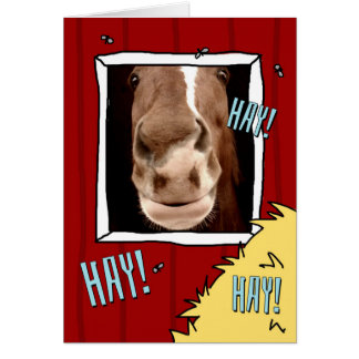 Hey! Thinking of you card with goofy horse.