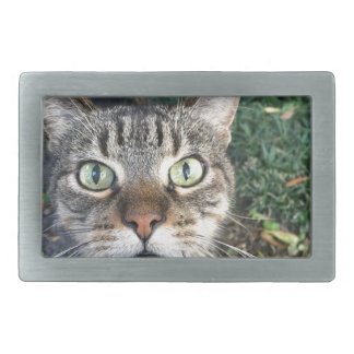 """""""Hey You"""" says this cat Rectangular Belt Buckle"""