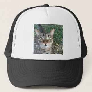 """Hey You"" says this cat Trucker Hat"