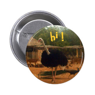 hi ! 2 inch round button