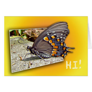 Hi Hello How Are You Butterfly Greeting Card