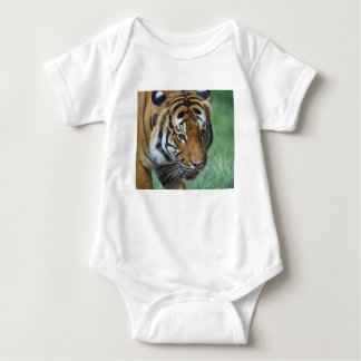 Hi-Res Malay Tiger Close-up Baby Bodysuit