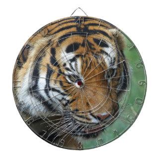 Hi-Res Malay Tiger Close-up Dart Board