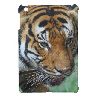 Hi-Res Malay Tiger Close-up iPad Mini Cover