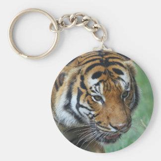 Hi-Res Malay Tiger Close-up Keychain