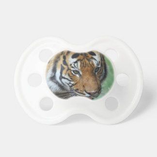 Hi-Res Malay Tiger Close-up Pacifier