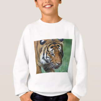 Hi-Res Malay Tiger Close-up Sweatshirt