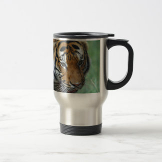 Hi-Res Malay Tiger Close-up Travel Mug