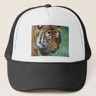 Hi-Res Malay Tiger Close-up Trucker Hat