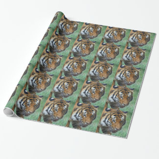 Hi-Res Malay Tiger Close-up Wrapping Paper