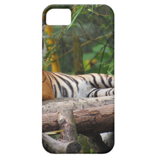 Hi-Res Malay Tiger Lounging on Log Case For The iPhone 5