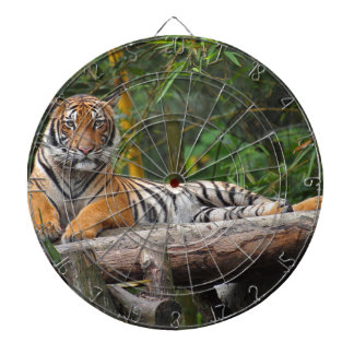 Hi-Res Malay Tiger Lounging on Log Dartboard