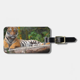 Hi-Res Malay Tiger Lounging on Log Luggage Tag