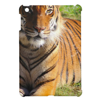 Hi-Res Malayan Tiger Case For The iPad Mini