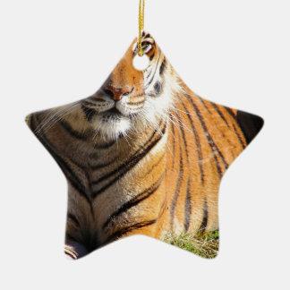 Hi-Res Malayan Tiger Ceramic Ornament