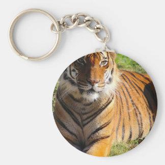 Hi-Res Malayan Tiger Keychain