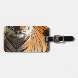 Hi-Res Malayan Tiger Luggage Tag