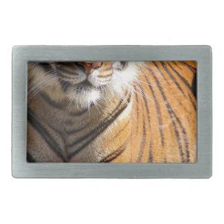 Hi-Res Malayan Tiger Rectangular Belt Buckle