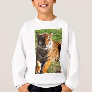 Hi-Res Malayan Tiger Sweatshirt