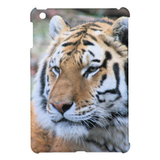 Hi-Res Stoic Royal Bengal Tiger Case For The iPad Mini