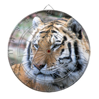 Hi-Res Stoic Royal Bengal Tiger Dartboard