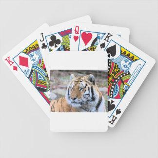Hi-Res Stoic Royal Bengal Tiger Poker Deck