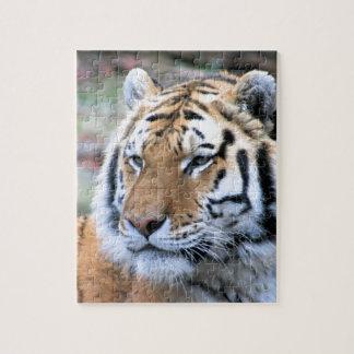 Hi-Res Stoic Royal Bengal Tiger Puzzles