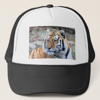 Hi-Res Stoic Royal Bengal Tiger Trucker Hat