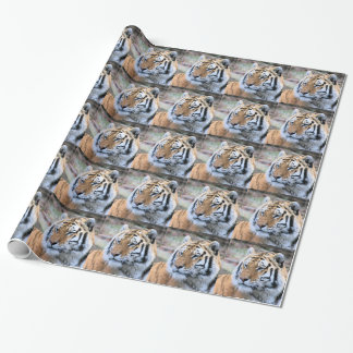 Hi-Res Stoic Royal Bengal Tiger Wrapping Paper