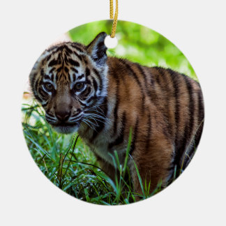Hi-Res Sumatran Tiger Cub Ceramic Ornament