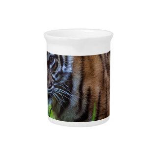 Hi-Res Sumatran Tiger Cub Drink Pitcher