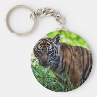 Hi-Res Sumatran Tiger Cub Keychain