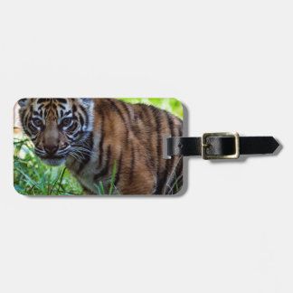 Hi-Res Sumatran Tiger Cub Luggage Tag