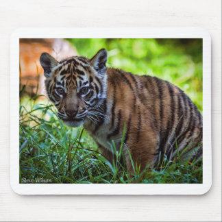 Hi-Res Sumatran Tiger Cub Mouse Pad