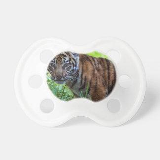 Hi-Res Sumatran Tiger Cub Pacifier