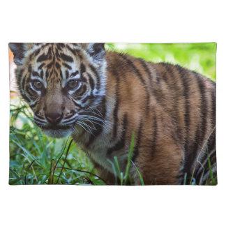 Hi-Res Sumatran Tiger Cub Placemat