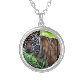 Hi-Res Sumatran Tiger Cub Silver Plated Necklace