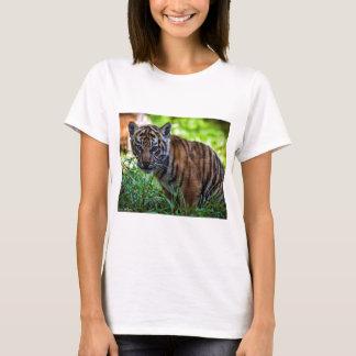 Hi-Res Sumatran Tiger Cub T-Shirt