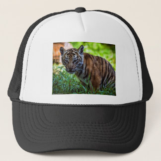 Hi-Res Sumatran Tiger Cub Trucker Hat