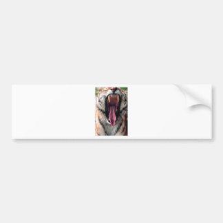 Hi-Res Tiger Bearing Jaws Bumper Sticker
