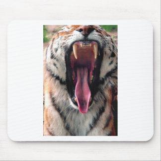 Hi-Res Tiger Bearing Jaws Mouse Pad