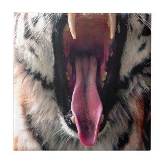 Hi-Res Tiger Bearing Jaws Tile