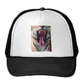 Hi-Res Tiger Bearing Jaws Trucker Hat